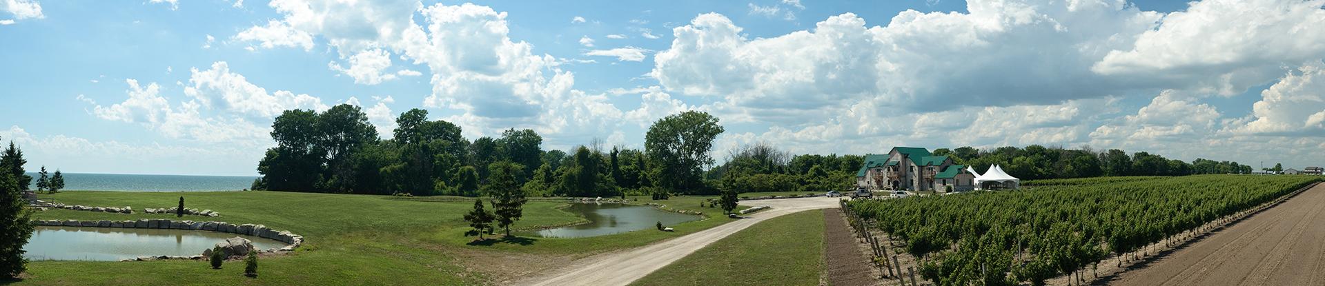 Lake-Pond-Vineyard-Winery_02
